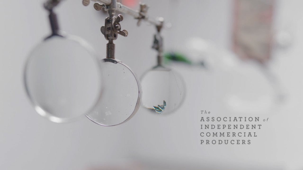 Making of the AICP 2014 Title Sequence: A Delicate Balance