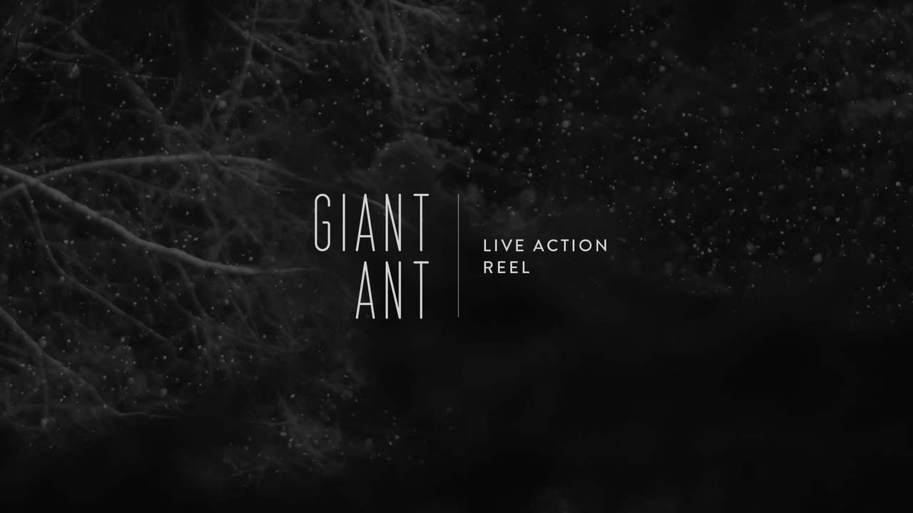Giant Ant // Live Action Reel: Summer 2015