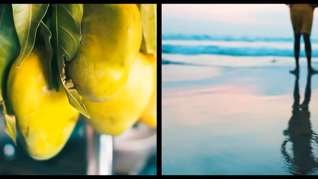 SOUTH INDIA - TWO PERSPECTIVES (split screen)