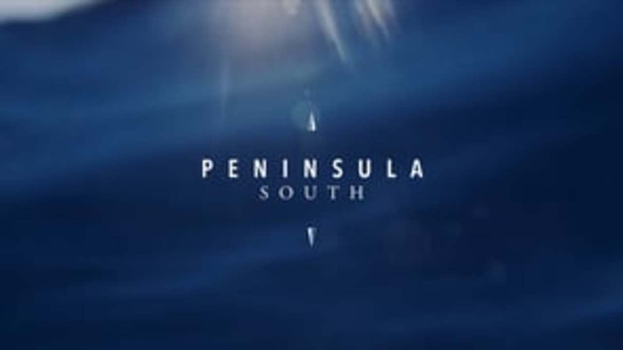 Herbie and Nathan Fletcher: Peninsula South