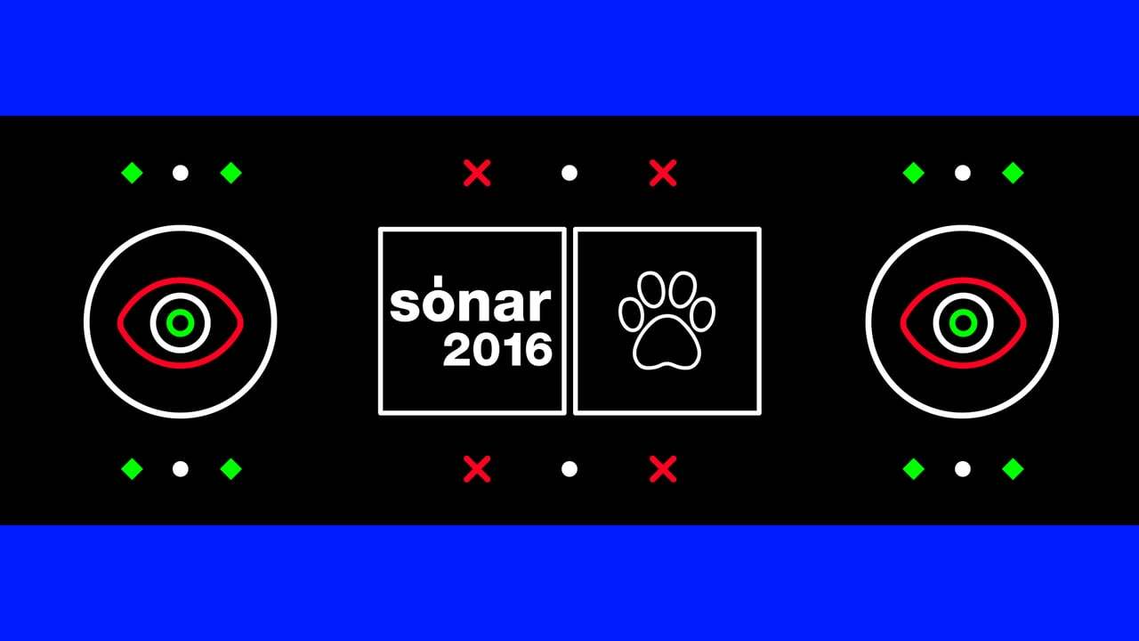 Sonar / Live Graphics