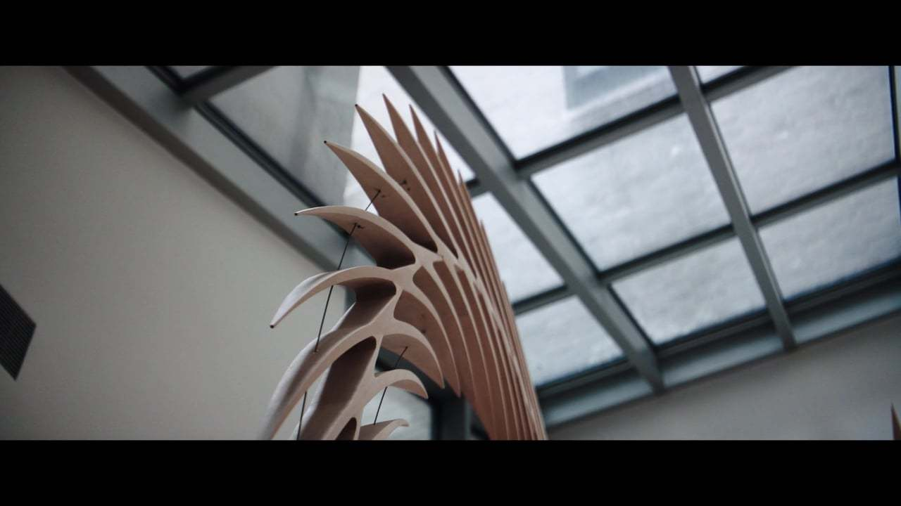 Architect Santiago Calatrava - NOWNESS