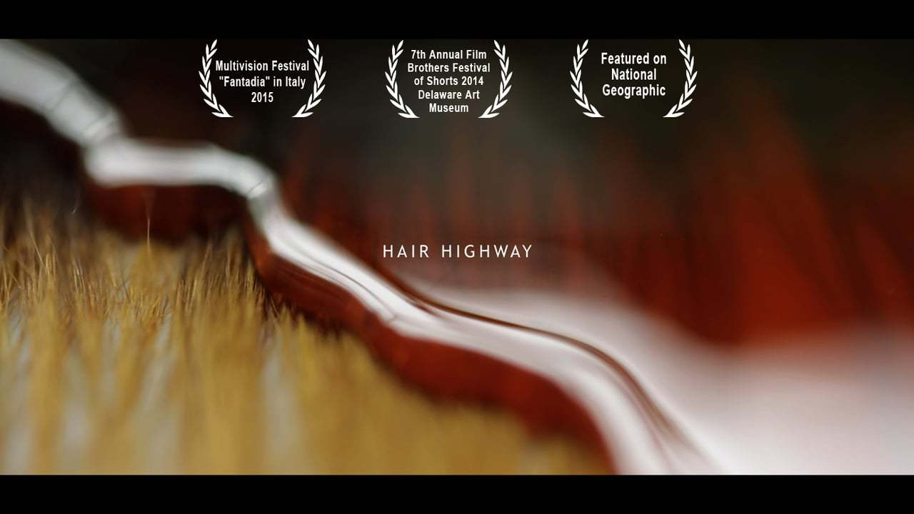Hair Highway